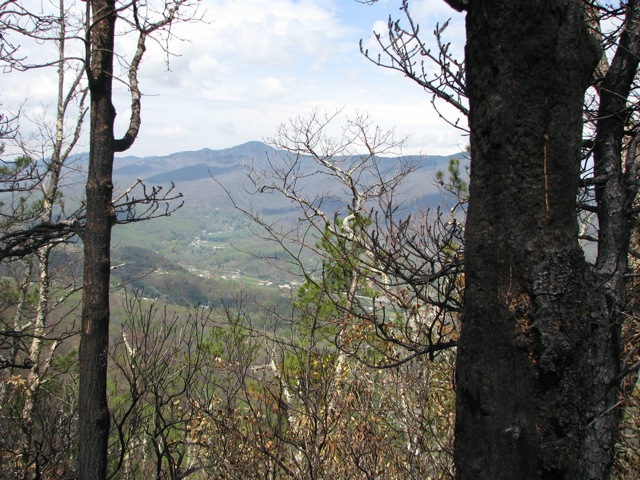 Pinnacle View After Fire