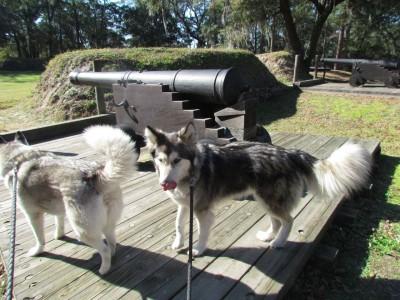 Kiska and artillery