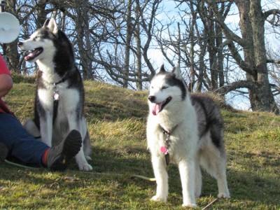 Kodi and Nia