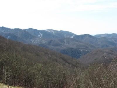 Upper ridges
