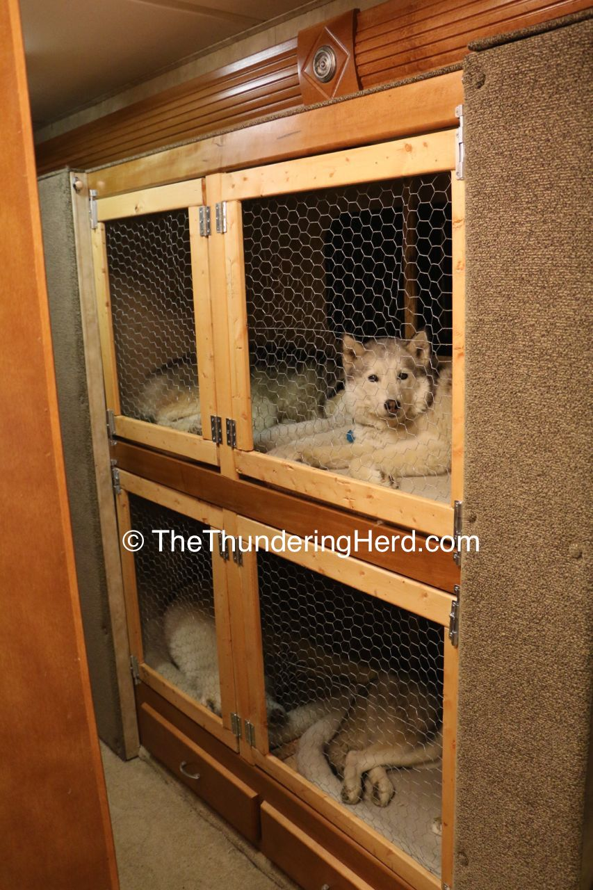Dog Bunk Bed Crate