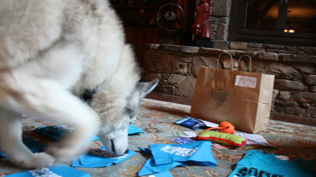 Queen Natasha inspects the goody bag.