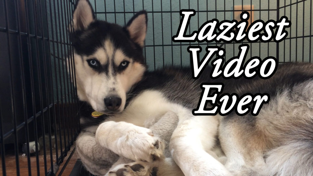Laziest Video Ever – Film Friday