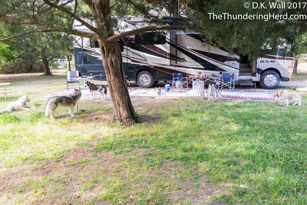 Huntington Beach State Park Camping The Thundering Herd