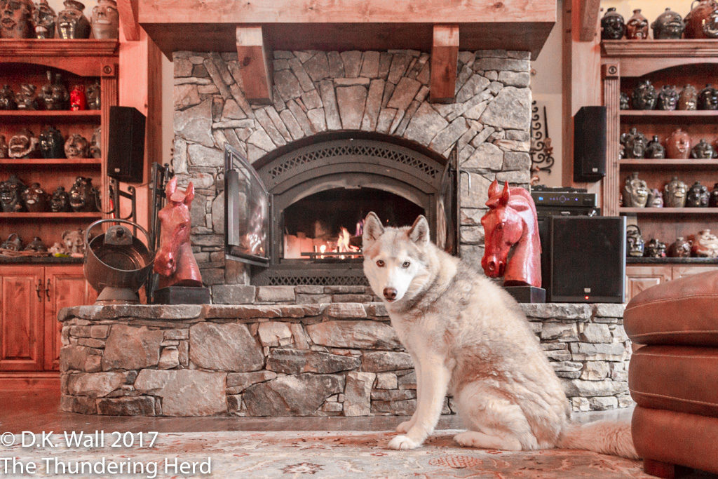 Who cares that the calendar says May? It's cold enough for May fires in the fireplace.