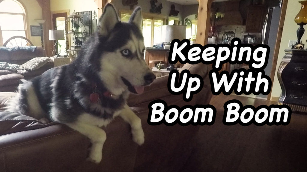 Keeping Up With Boom Boom