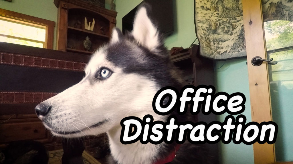 Office Distraction – Film Friday