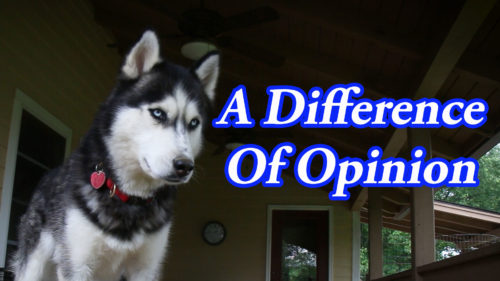 Difference of Opinion