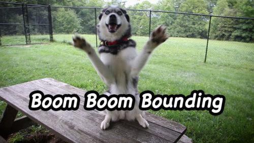 Boom Boom Bounding