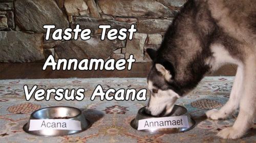 Taste Test - Annamaet versus Acana