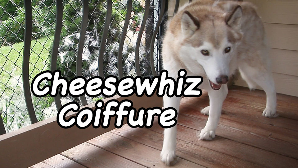 Cheesewhiz Coiffure – Film Friday