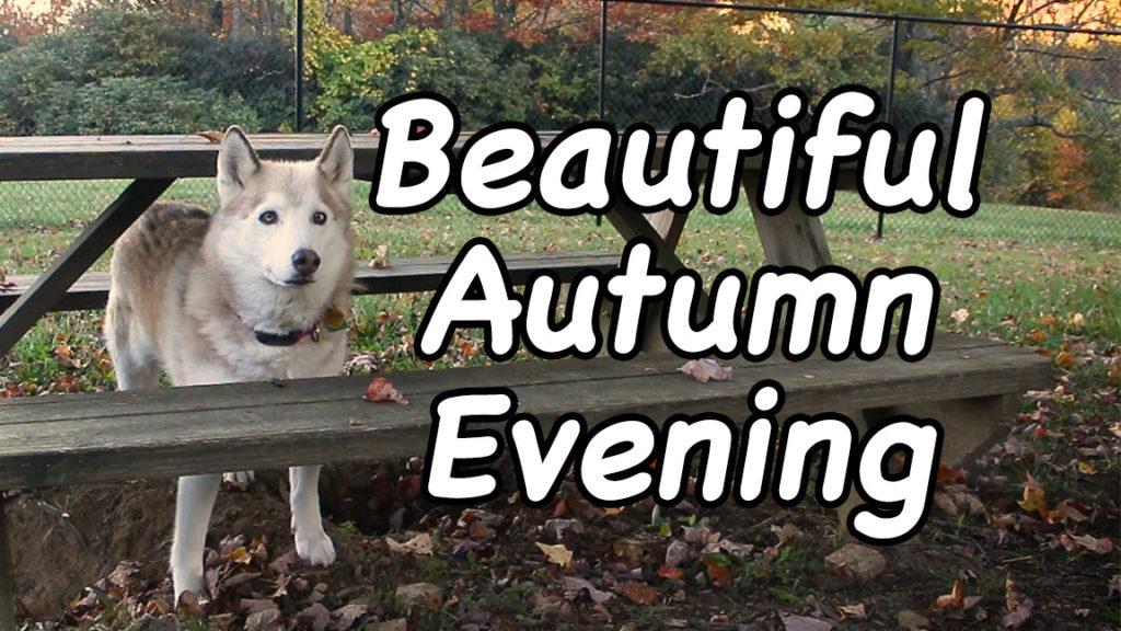 Beautiful Autumn Evening