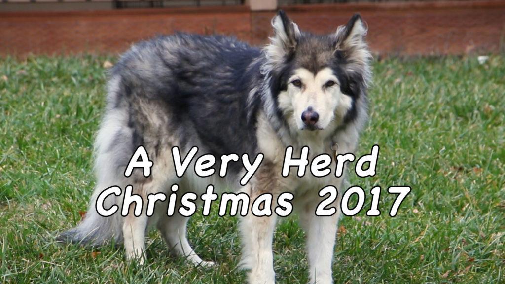 A Very Herd Christmas 2017