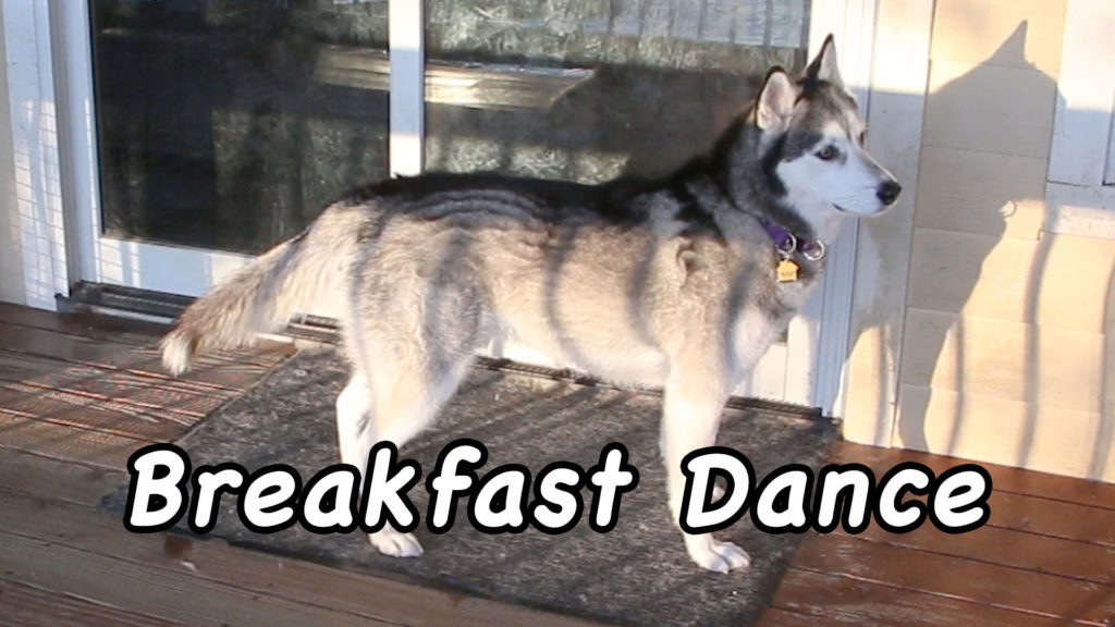 Breakfast Dance