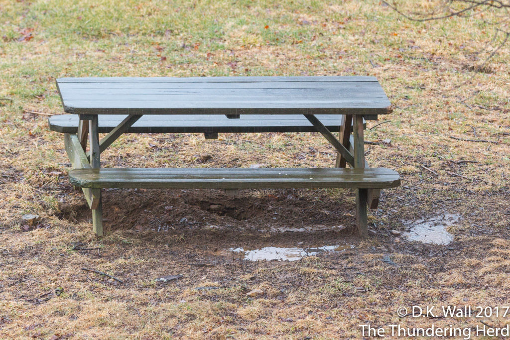 Soaked picnic table and puddles.