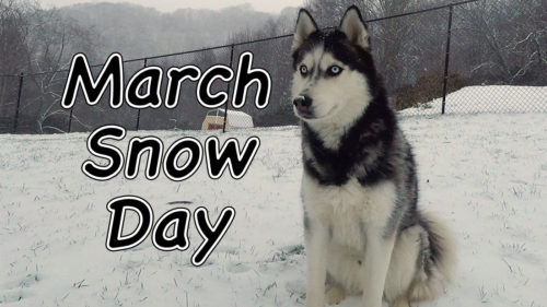 March Snow Day Title