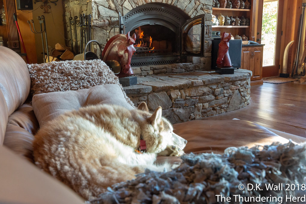 Ah, the first fire in the fireplace of the winter.