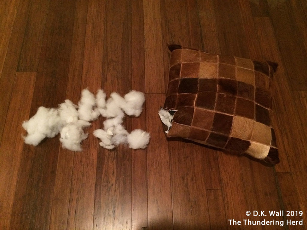 The pillow that exploded without warning.