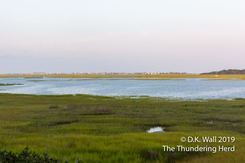 An evening view across the marsh to Garden City and the Atlantic Ocean beyond.