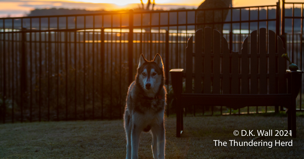 princely sunrise